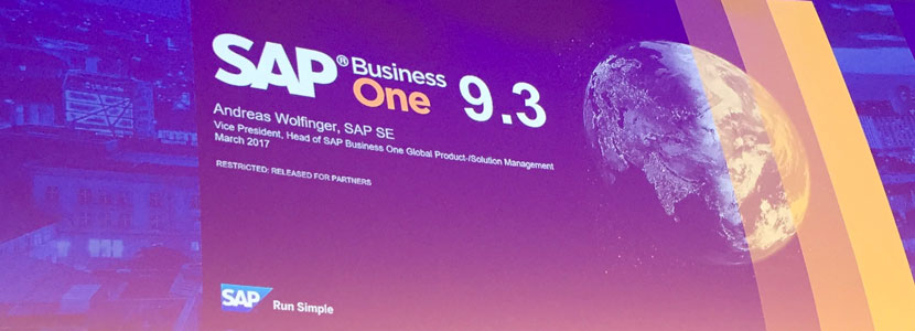 SAP Libera SAP Business One 9.3