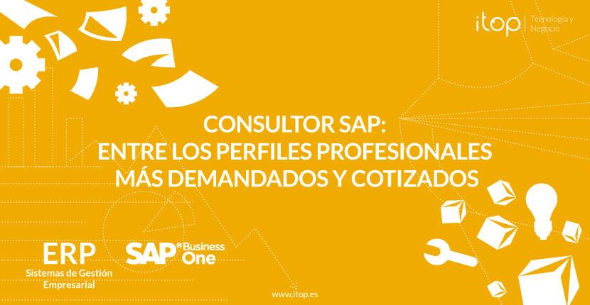 Consultor SAP: entre los perfiles profesionales más demandados y cotizados