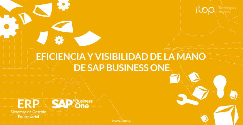 Eficiencia y visibilidad de la mano de SAP Business One