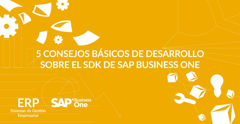 5 consejos básicos de desarrollo sobre el SDK de SAP Business One