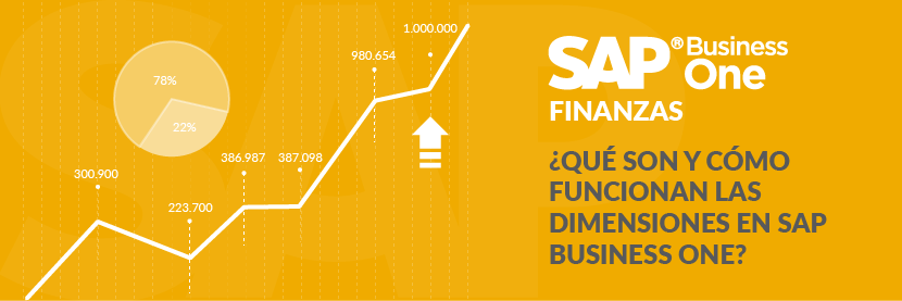 Las dimensiones en SAP Business One
