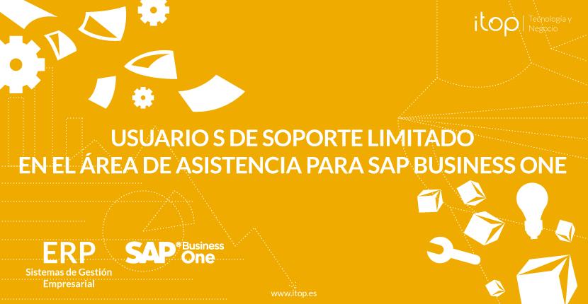 Usuario S de soporte limitado en el área de asistencia para SAP Business One